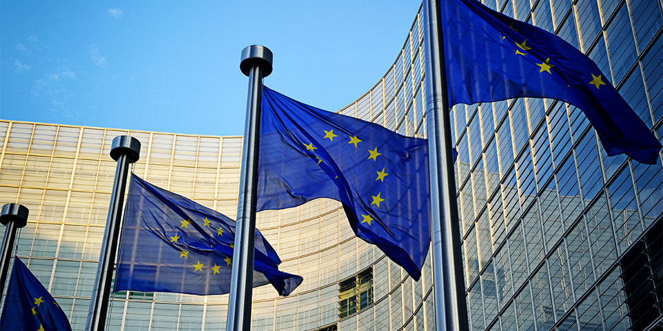 Discover how the European institutions work with BuendiaTours